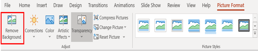 Menu options for PowerPoint Picture Format